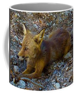 Cute Fox Friend  Coffee Mug