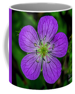 Cutleaf Cranesbill Coffee Mug by Barbara Bowen