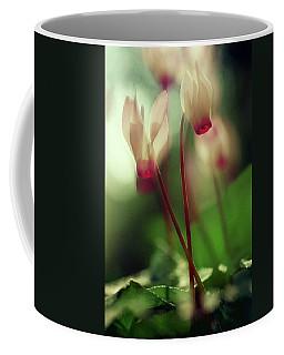 Cyclamens Coffee Mug