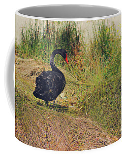 Cygnus Atratus I Coffee Mug