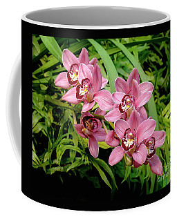 Coffee Mug featuring the photograph Cymbidium Orchids Spray by Sue Melvin