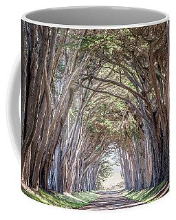 Coffee Mug featuring the photograph Cypress Embrace by Everet Regal