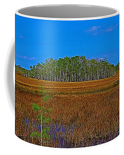 Cypress Hammock Coffee Mug
