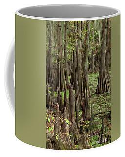 Cypress In Caddo Lake Coffee Mug