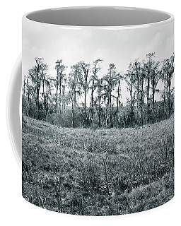 Coffee Mug featuring the photograph Cypress Oasis by Andy Crawford