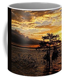 Cypress Sunset Coffee Mug