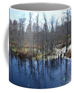 Cypress Swamp Coffee Mug by Gordon Mooneyhan