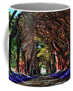 Cypress Tree Tunnel Coffee Mug