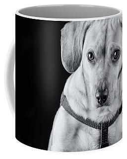 Dachshund Lab Mix Coffee Mug by Stephanie Hayes