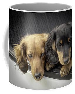 Coffee Mug featuring the photograph Dachshunds by Samuel M Purvis III
