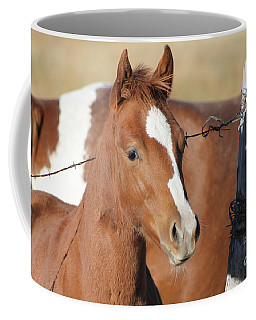 Daddys Home Coffee Mug by Pamela Walrath