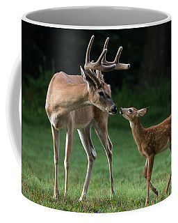 Coffee Mug featuring the photograph Daddy's Little Girl by Andrea Silies