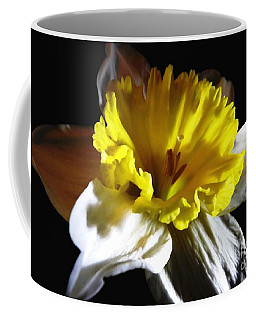 Coffee Mug featuring the photograph Daffodil 2 by Rose Santuci-Sofranko