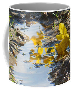 Coffee Mug featuring the photograph Daffodil And Reflection by Karen Molenaar Terrell