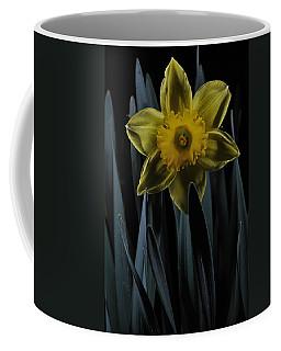 Daffodil By Moonlight Coffee Mug