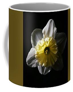 Daffodil By Sunlight Coffee Mug