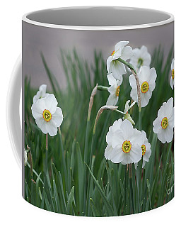 Daffodil 'cantabile' Coffee Mug