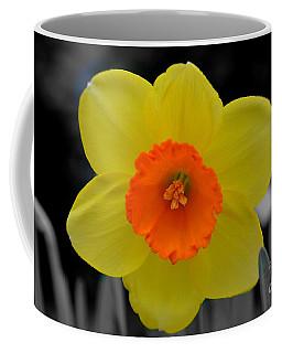 Daffodil Delight  Coffee Mug