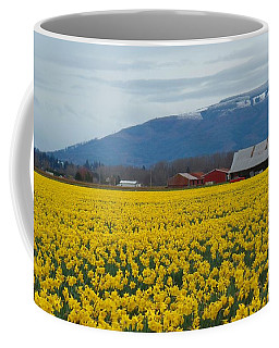Coffee Mug featuring the photograph Daffodil Field by Karen Molenaar Terrell