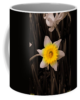 Coffee Mug featuring the photograph Daffodil by Lisa Wooten