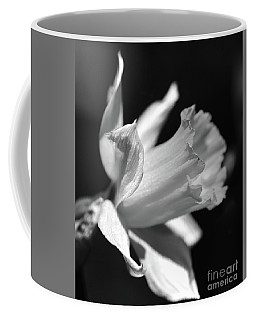 Coffee Mug featuring the photograph Daffodil Profile Bw Right by Cindy Manero