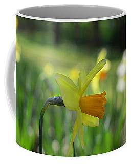 Daffodil Side Profile Coffee Mug