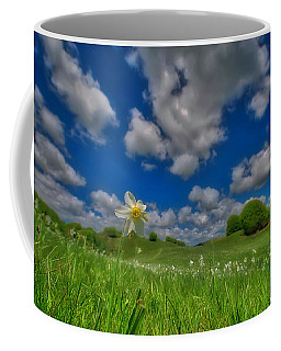 Coffee Mug featuring the photograph Daffodils Blossimg At Cavalla Plains 2017 V - Fioritura Dei Narcisi Al Pian Della Cavalla 2017 by Enrico Pelos