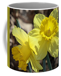 Daffodils In Spring Coffee Mug by Sheila Brown