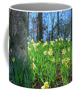 Daffodils On Hillside 2 Coffee Mug