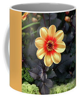 Dahlias Flower - Good Morning Sunshine Coffee Mug