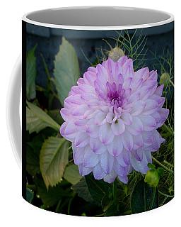 Dahlia Beautiful Coffee Mug by Shirley Heyn