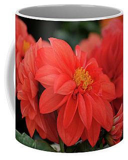 Dahlia Bloomer Coffee Mug by Ronda Ryan