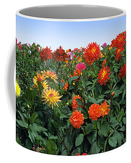 Dahlia Flower Panorama Coffee Mug