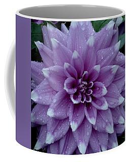 Dahlia In Rain Coffee Mug by Shirley Heyn