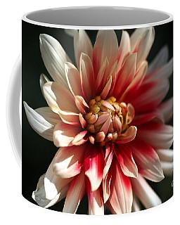Dahlia Warmth Coffee Mug