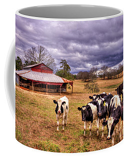 Dairy Heifer Groupies The Red Barn Art Coffee Mug
