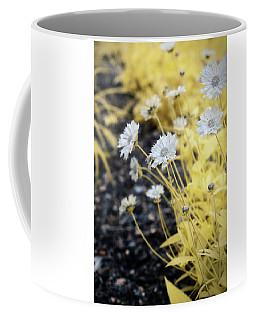 Daisey Coffee Mug by Paul Seymour