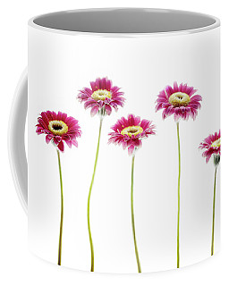 Coffee Mug featuring the photograph Daisies In A Row by Rebecca Cozart