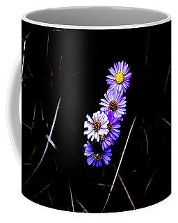 Coffee Mug featuring the photograph Daisies In Purple by Lorraine Devon Wilke