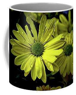 Coffee Mug featuring the photograph Daisies In The Rain by Diana Mary Sharpton