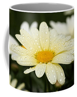 Coffee Mug featuring the photograph Daisy After Shower by Angela Rath