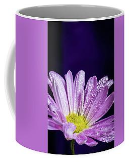 Daisy After The Rain Coffee Mug