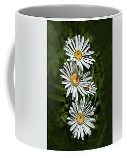 Coffee Mug featuring the photograph Daisy Chain by Marie Leslie