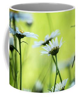 Daisy Collection  Coffee Mug