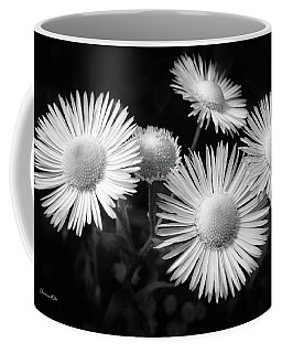 Coffee Mug featuring the photograph Daisy Flowers Black And White by Christina Rollo