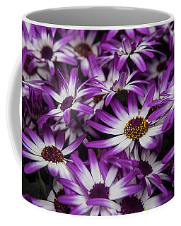 Daisy Flowers-2231 Coffee Mug