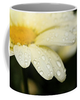 Coffee Mug featuring the photograph Daisy In Spring by Angela Rath