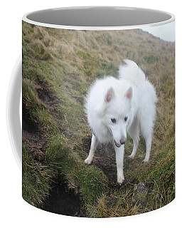 Coffee Mug featuring the photograph Daisy - Japanees Spits by David Grant