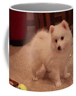 Coffee Mug featuring the photograph Daisy - Japanese Spitz by David Grant