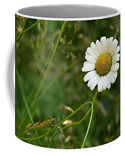 Coffee Mug featuring the photograph Daisy by Joy Nichols